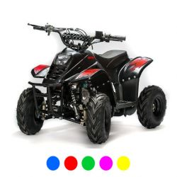 "Quad Big Foot Eco 6"" 800W - rouge"