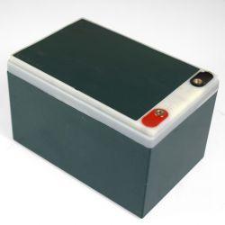 Batterie 6-DZM-12 12V12Ah de quad électrique