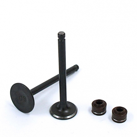 Soupapes ø20mm / ø23mm LIFAN 110cc / 125cc - 1P52