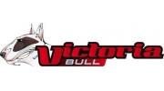 logo Victoria bull